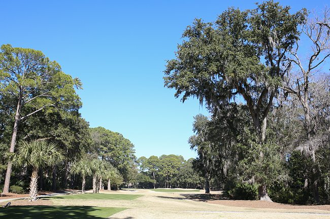 Golf Course on Hilton Head