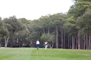 Fairways at Harbour Town Golf