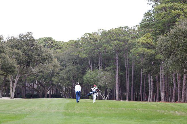 Fairways at Harbour Town Golf