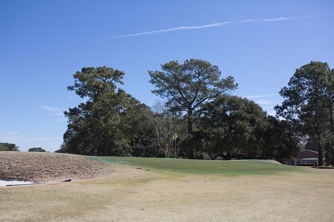 Sloping greens in Charleston