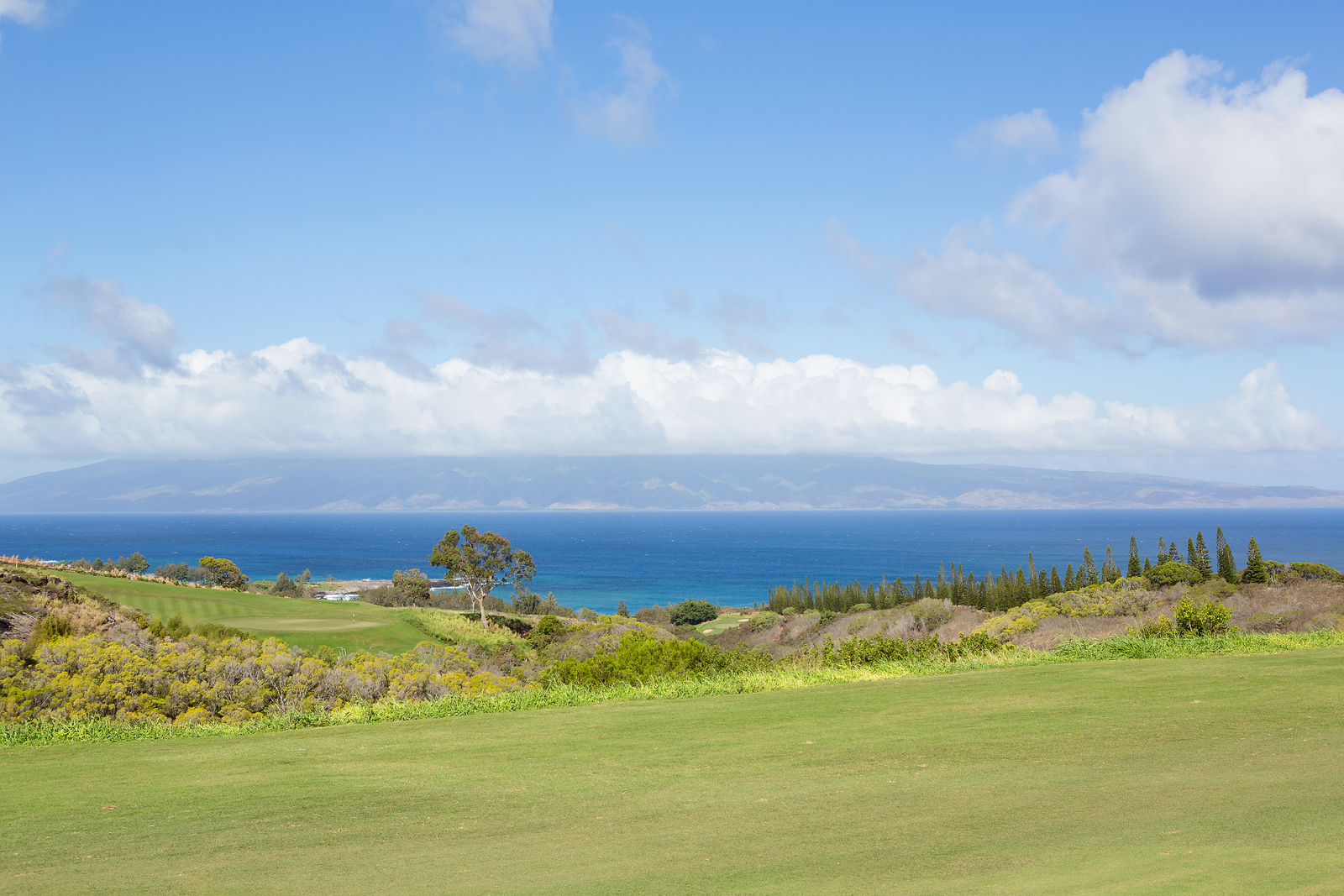 Kapalua Panoramic View