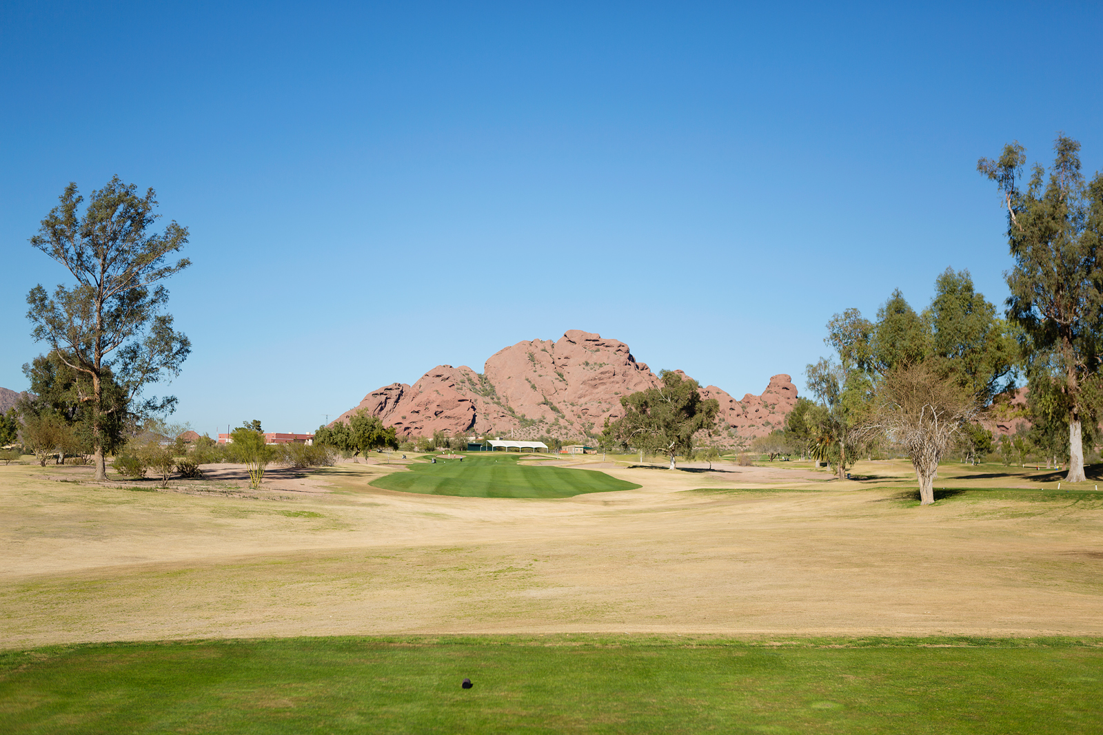 Papago_Hole 9 Tee